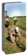 Farmer Inspects Peanut Field Portable Battery Charger