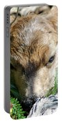 Fawn 168 Portable Battery Charger