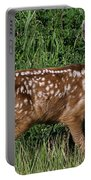 Fawn In The Open Portable Battery Charger
