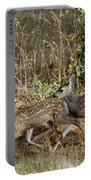 Fawns Running Portable Battery Charger