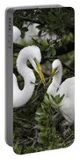 Feathering Their Nest Portable Battery Charger