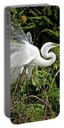 Beautiful Feathers And Foliage Portable Battery Charger