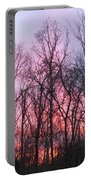 February At Twilight Portable Battery Charger