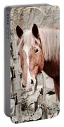 February Horse Portrait Portable Battery Charger