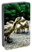 Feed Me Seymore - Baby Geese Portable Battery Charger