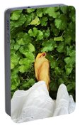 Feet Around The World #3 Portable Battery Charger