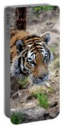 Feline Focus Portable Battery Charger