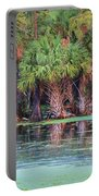 Fellsmere Cypress Swamp Portable Battery Charger