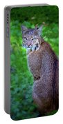 Female Bobcat Portable Battery Charger