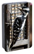 Female Hairy Woodpecker Portable Battery Charger