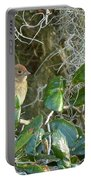 Immature Female Indigo Bunting Portable Battery Charger
