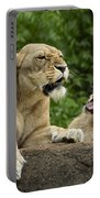 Momma Lion Over Cubs Attitude Portable Battery Charger
