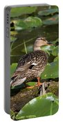 Female Mallard Among Lily Pads Portable Battery Charger