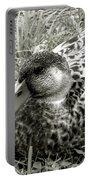 Female Mallard Duck Resting 2 Portable Battery Charger