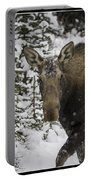 Female Moose In A Winter Wonderland Portable Battery Charger