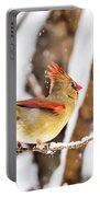 Female Northern Cardinal In The Snow Portable Battery Charger