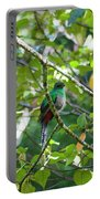 Female Quetzal Portable Battery Charger