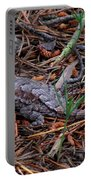 Fence Lizard Portable Battery Charger