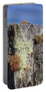 Fence Post Encrusted With Lichen  Portable Battery Charger