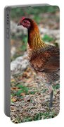 Feral Bird Portable Battery Charger