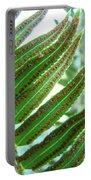 Fern Art Print Green Forest Ferns Baslee Troutman Portable Battery Charger