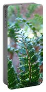 Fern Art Prints Green Sunlit Forest Ferns Giclee Baslee Troutman Portable Battery Charger