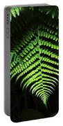 Fern Canyon California 1 Portable Battery Charger