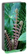 Fern Folly Portable Battery Charger