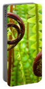 Fern Fronds Fine Art Photography Forest Ferns Green Baslee Troutman Portable Battery Charger