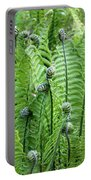 Fern Meet And Greet Portable Battery Charger