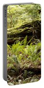 Fern Valley Portable Battery Charger