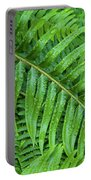 Ferns After A Spring Rain Portable Battery Charger