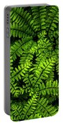 Ferns After The Rain Portable Battery Charger
