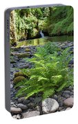 Ferns Along Banks Of Eagle Creek Portable Battery Charger