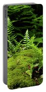 Ferns And Moss On The Ma At Portable Battery Charger