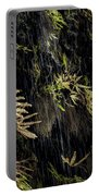 Ferns Below Falls By Jean Noren Portable Battery Charger
