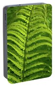 Ferns Portable Battery Charger