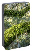 Ferns On Live Oak Portable Battery Charger