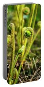 Fiddlehead Ferns Portable Battery Charger