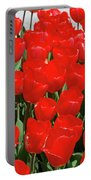 Field Of Brilliant Red Tulip Flowers In A Garden Portable Battery Charger