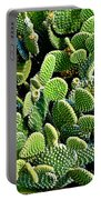 Field Of Cactus Paddles Portable Battery Charger