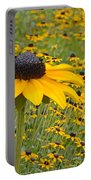 Field Of Coneflowers Portable Battery Charger