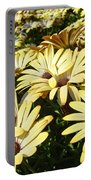 Field Of Daisies Landscape Floral Art Prints Daisy Baslee Troutman Portable Battery Charger