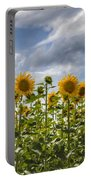 Field Of Dreams Panorama Portable Battery Charger