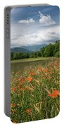Field Of Orange Daylilies Portable Battery Charger