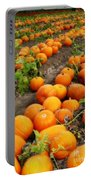Field Of Pumpkins Card Portable Battery Charger