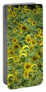 Field Of Sun Portable Battery Charger