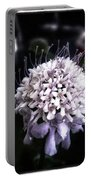 Field Scabious. A Member Of The Portable Battery Charger by Mr Photojimsf