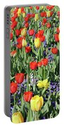 Fields Of Beauty 64 Portable Battery Charger