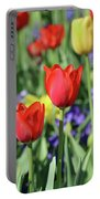 Fields Of Beauty 72 Portable Battery Charger